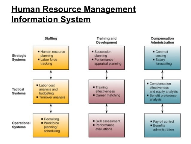 what is management information systems essay