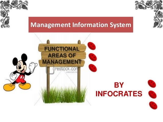 Management Information System FUNCTIONAL AREAS OF MANAGEMENT  BY INFOCRATES www.themegallery.com