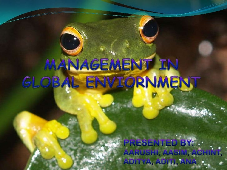 MANAGEMENT IN GLOBAL ENVIORNMENT<br />PRESENTED BY:<br />AARUSHI, AASIM, ACHINT, ADITYA, ADITI, ANA<br />