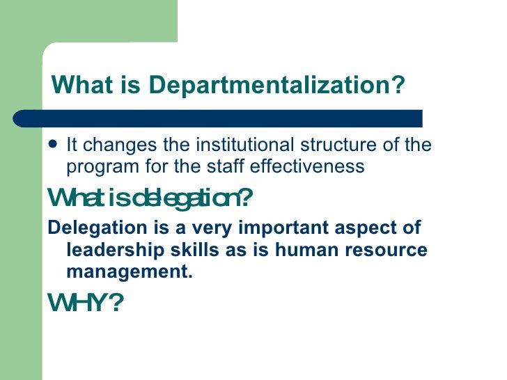 explain departmentalization
