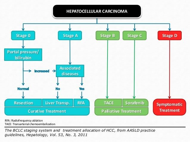 hepatocellular carcinoma diagnosis and treatment pdf