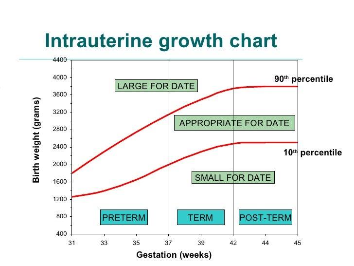 Uterine Growth Chart Gungozq Eye