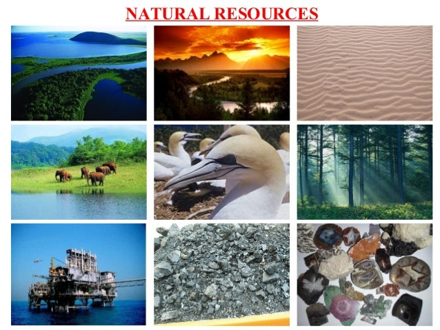 Natural Resources Collage