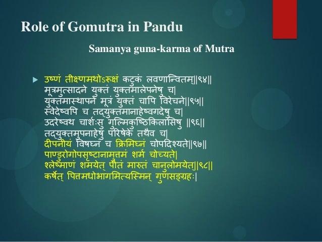 Role of Gomutra in Pandu Samanya guna-karma of Mutra  उष्णं तीक्ष्णभथोऽरूषं कटुकं रिणाश्न्ितभ्||९४|| भूत्रभुत्िादने मुक्क...