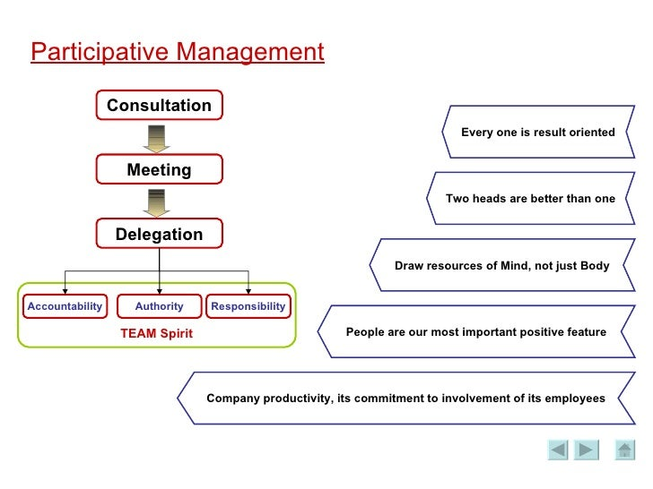 organizational perfomance and participative management essay Knowledge management and organizational performance: theoretical study knowledge management and organizational performance: theoretical study 1 introduction knowledge is an asset that needs to be effectively managed.