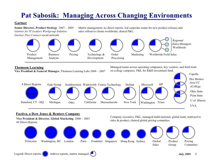Pat Sabosik: Managing Across Changing Environments Gartner Senior Director, Product Strategy 2007 – 2009         Matrix ma...
