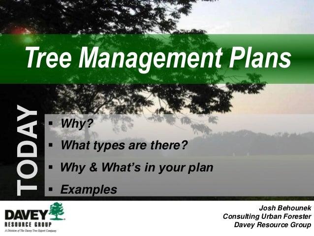 Urban Forest Management Plan
