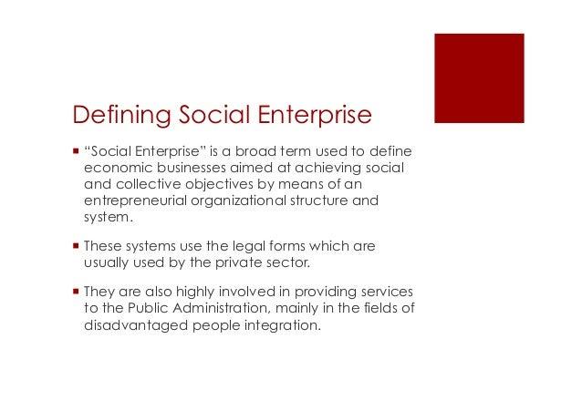 social enterprise management