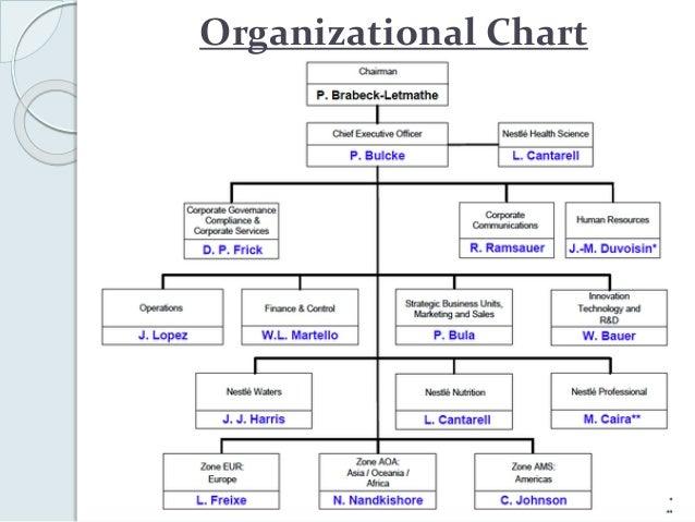 organizational structure of nestle pdf