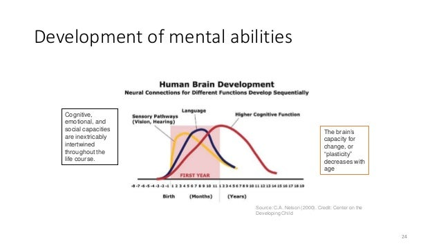 Development of mental abilities Source: C.A. Nelson (2000). Credit: Center on the Developing Child The brain's capacity fo...