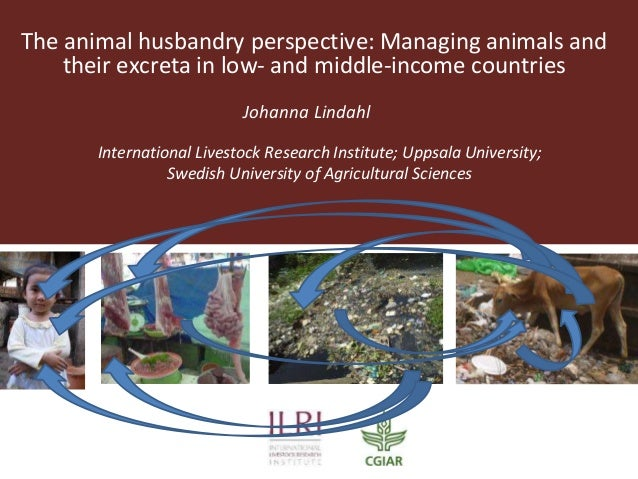 The animal husbandry perspective: Managing animals and their excreta in low- and middle-income countries Johanna Lindahl I...