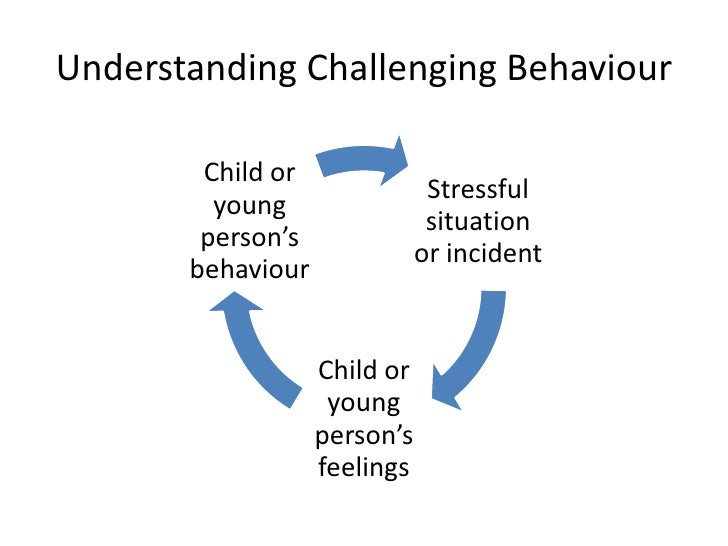 Image result for challenging behaviour