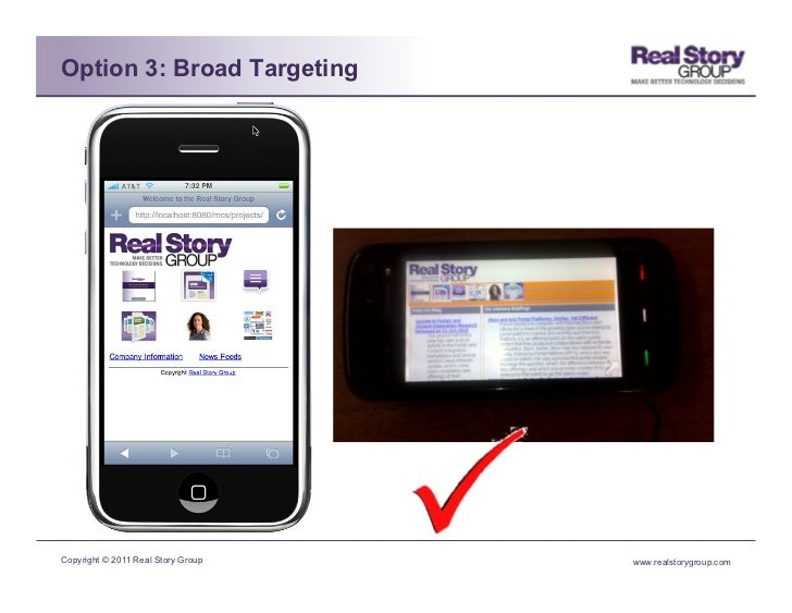 Option 3: Broad TargetingCopyright © 2011 Real Story Group   www.realstorygroup.com