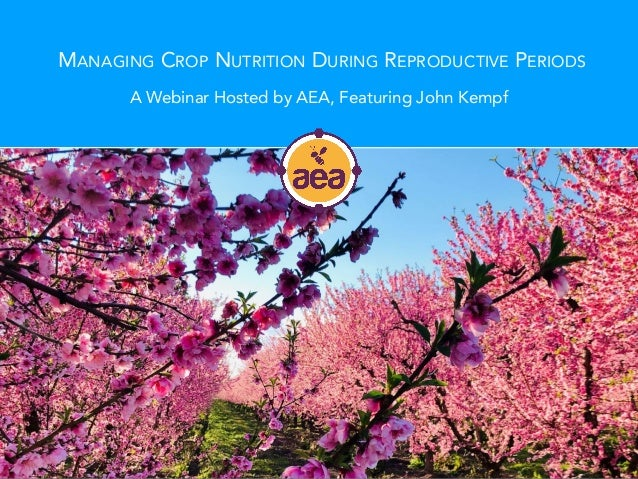 MANAGING CROP NUTRITION DURING REPRODUCTIVE PERIODS A Webinar Hosted by AEA, Featuring John Kempf