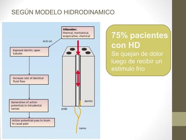 SEGÚN MODELO HIDRODINAMICO                         75% pacientes                         con HD                         Se...