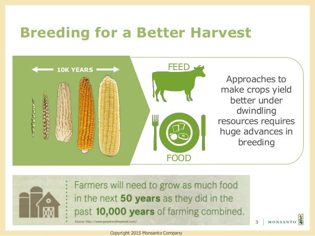 Breeding for a Better Harvest 3 Approaches to make crops yield better under dwindling resources requires huge advances in ...