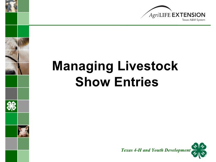 Managing Livestock  Show Entries Texas 4-H and Youth Development