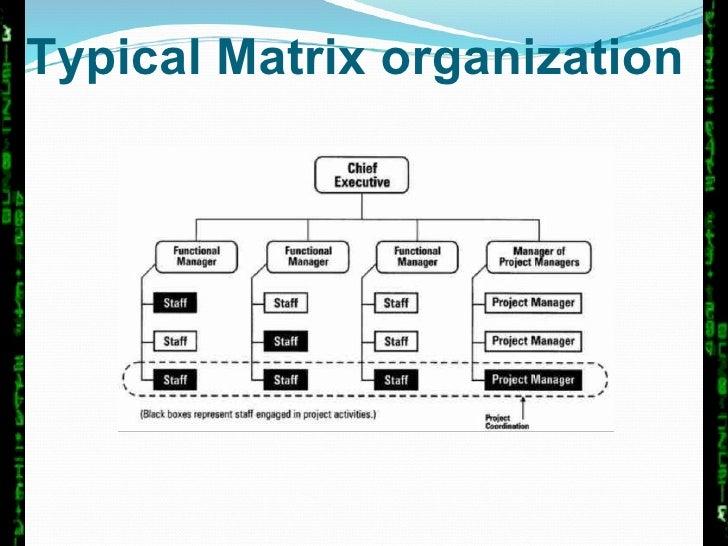 Managing Matrix Organization