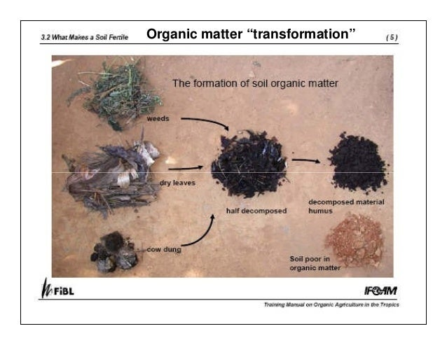 Managing organic matter for soil health and fertility for Soil organic matter