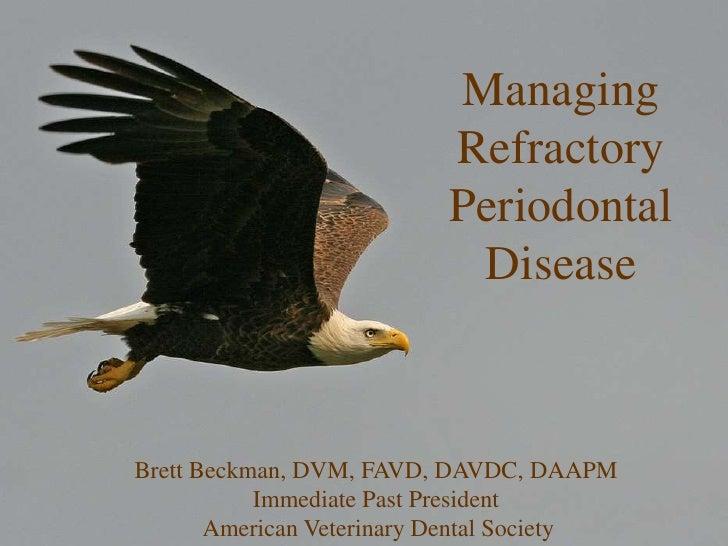 Managing Refractory Periodontal Disease<br />Brett Beckman, DVM, FAVD, DAVDC, DAAPM<br />Immediate Past President<br /> Am...