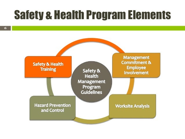 Safety And Health Program Management