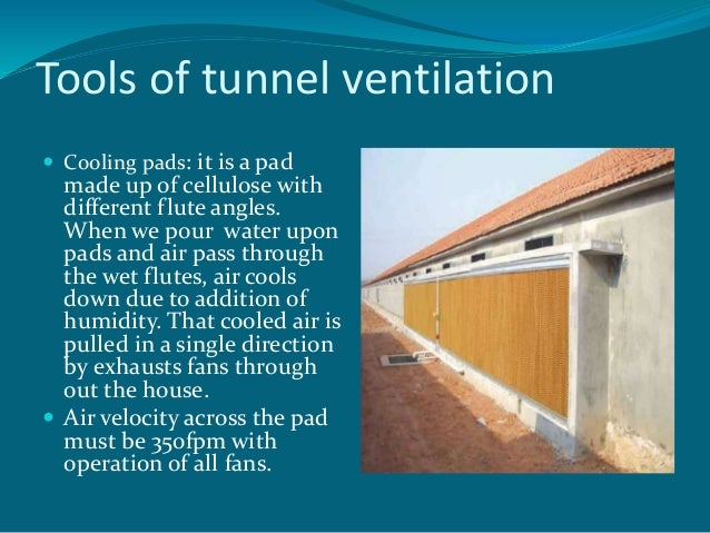 Poultry House Tunnel Doors Managing Ventilation In Modern