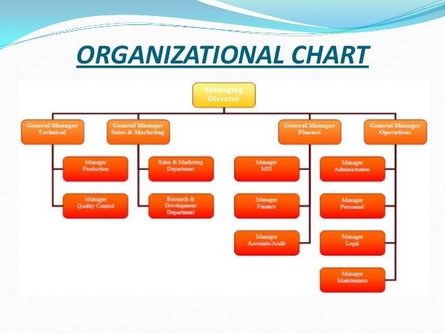 pepsico organizational structure ppt