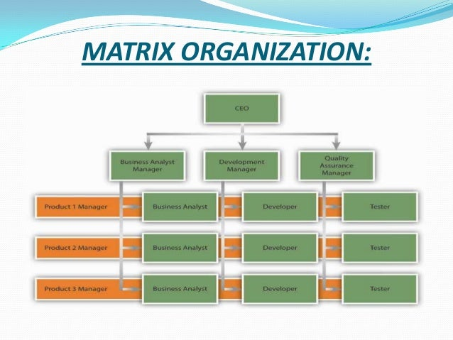 PepsiCo's Organizational Structure Analysis