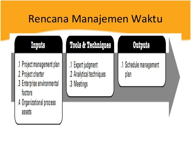 Body Of Knowledge To Project Manager Management Essay
