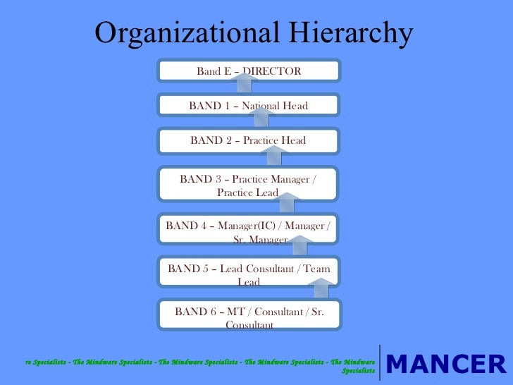 Mancer Consulting Services