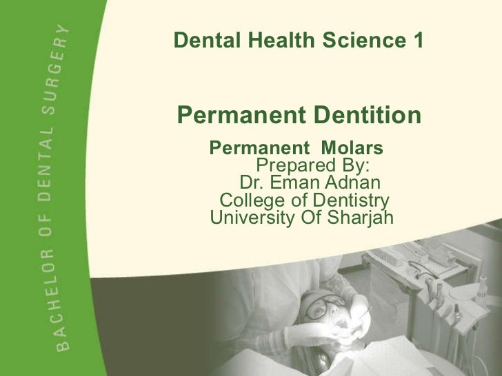 Dental Health Science 1 Permanent Dentition Permanent  Molars     Prepared By:   Dr. Eman Adnan   College of Dentistry    ...