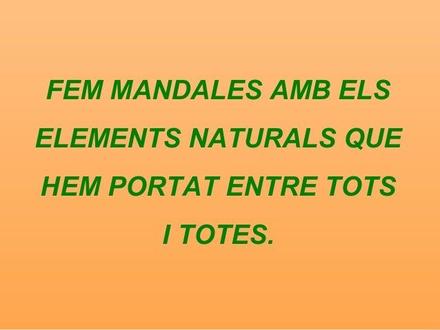 FEM MANDALES AMB ELS ELEMENTS NATURALS QUE HEM PORTAT ENTRE TOTS I TOTES.