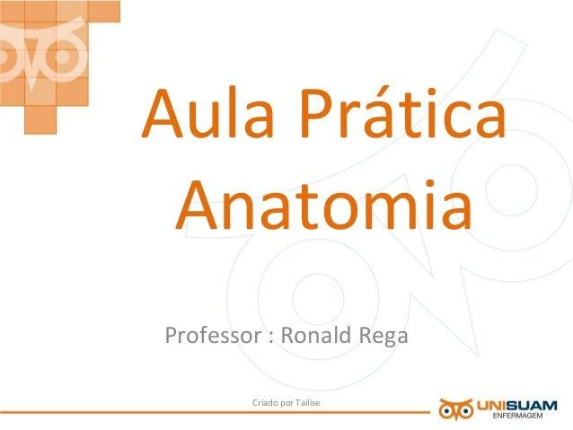 Aula PráticaAnatomiaProfessor : Ronald RegaCriado por Tailise