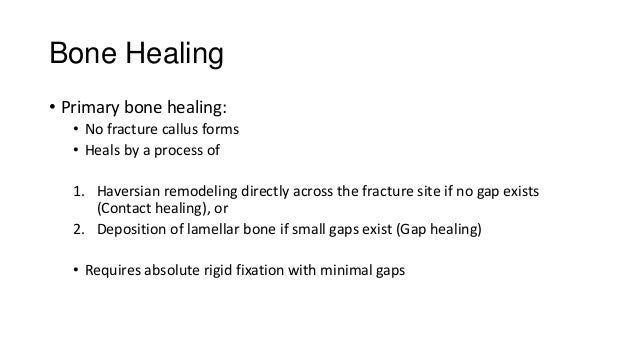 Bone Healing • Primary bone healing: • No fracture callus forms • Heals by a process of 1. Haversian remodeling directly a...