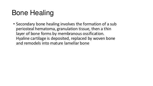 Bone Healing • Secondary bone healing involves the formation of a sub periosteal hematoma, granulation tissue, then a thin...