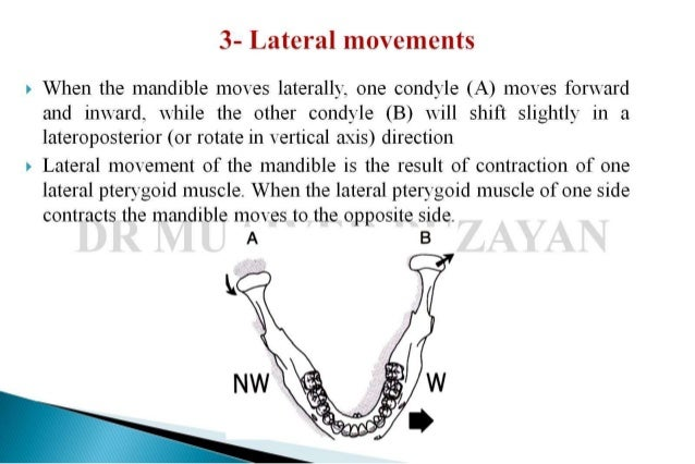 Lateral Info
