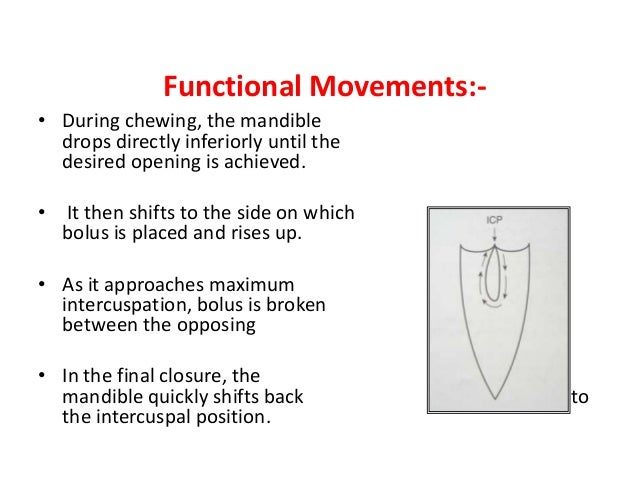 Envelope Of Motion 64 The Gothic Arch