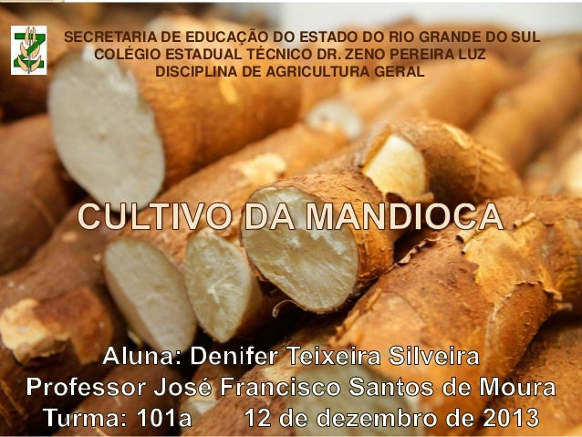 SECRETARIA DE EDUCAÇÃO DO ESTADO DO RIO GRANDE DO SUL COLÉGIO ESTADUAL TÉCNICO DR. ZENO PEREIRA LUZ DISCIPLINA DE AGRICULT...