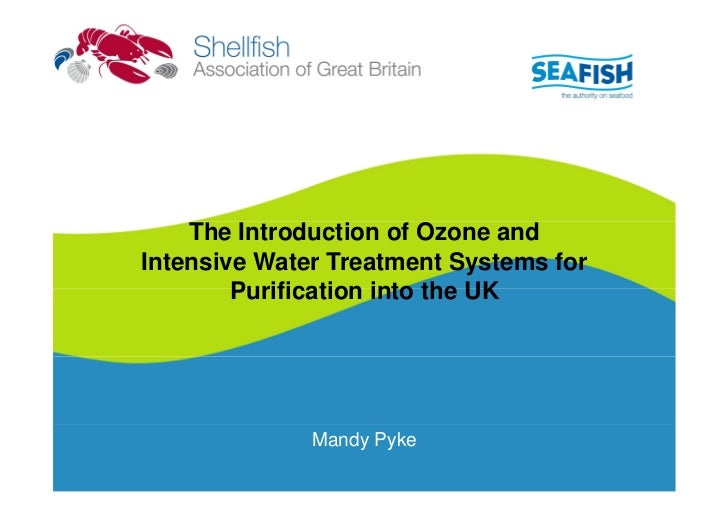 The Introduction of Ozone andIntensive Water Treatment Systems for        Purification into the UK              Mandy Pyke