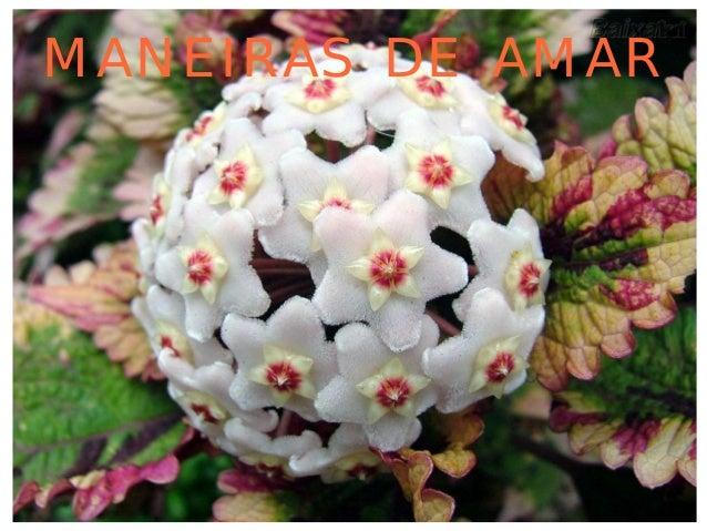 MANEIRAS DE AMAR