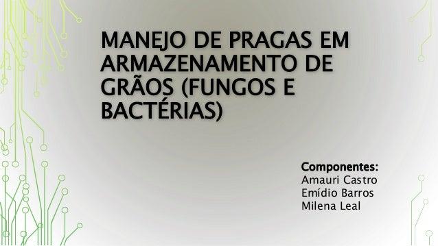 Componentes: Amauri Castro Emídio Barros Milena Leal