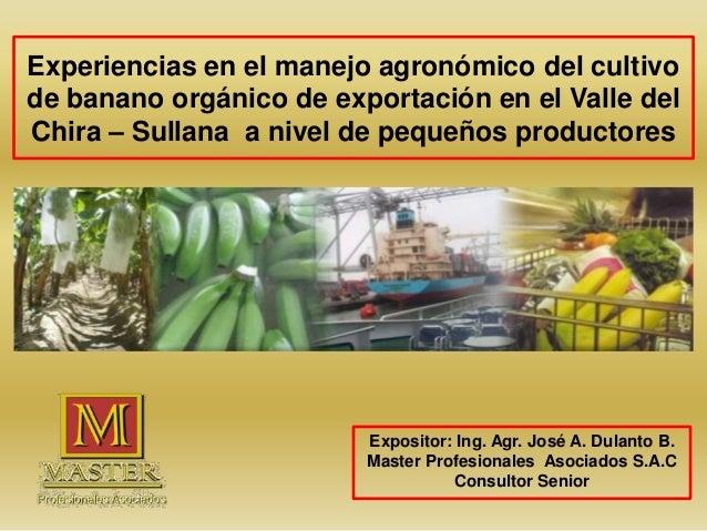 Experiencias en el manejo agronómico del cultivo de banano orgánico de exportación en el Valle del Chira – Sullana a nivel...
