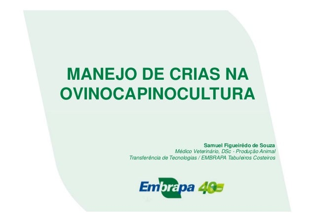 MANEJO DE CRIAS NAOVINOCAPINOCULTURASamuel Figueirêdo de SouzaMédico Veterinário, DSc - Produção AnimalTransferência de Te...