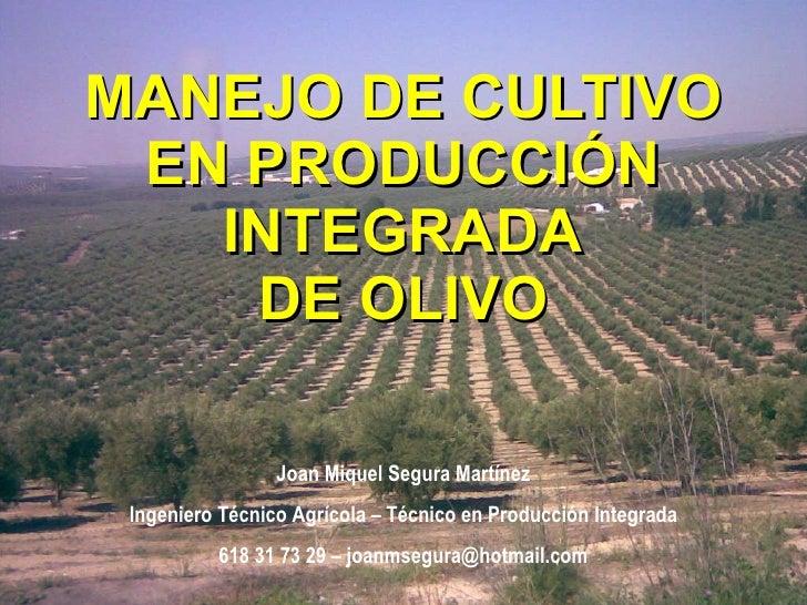 MANEJO DE CULTIVO EN PRODUCCIÓN INTEGRADA DE OLIVO Joan Miquel Segura Martínez Ingeniero Técnico Agrícola – Técnico en Pro...