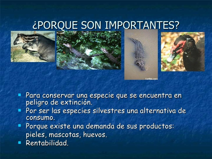 Manejo de fauna silvestre for Porque son importantes los arboles wikipedia