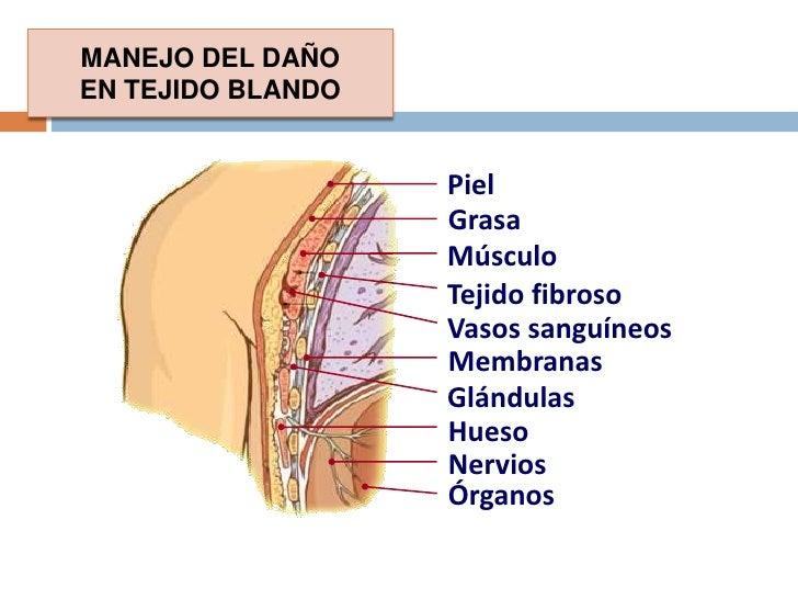 A/B en las primeras 3 horas después de la lesión (amplio espectro).