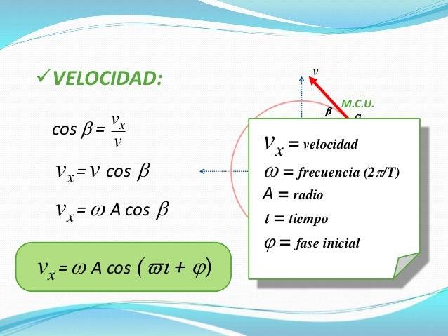 2) El período de un péndulo es independiente de su masa. Ley de las Masas