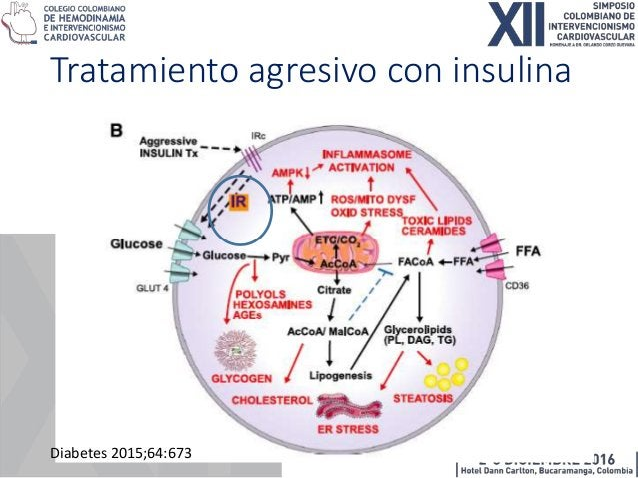 Diabetes 2015;64:673