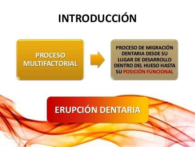 Manejo de los Terceros Molares en Cirugía Maxilofacial Slide 3