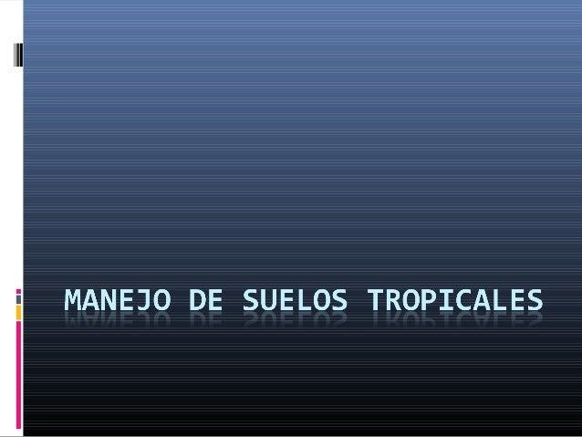  ¿Qué es el ambiente tropical?
